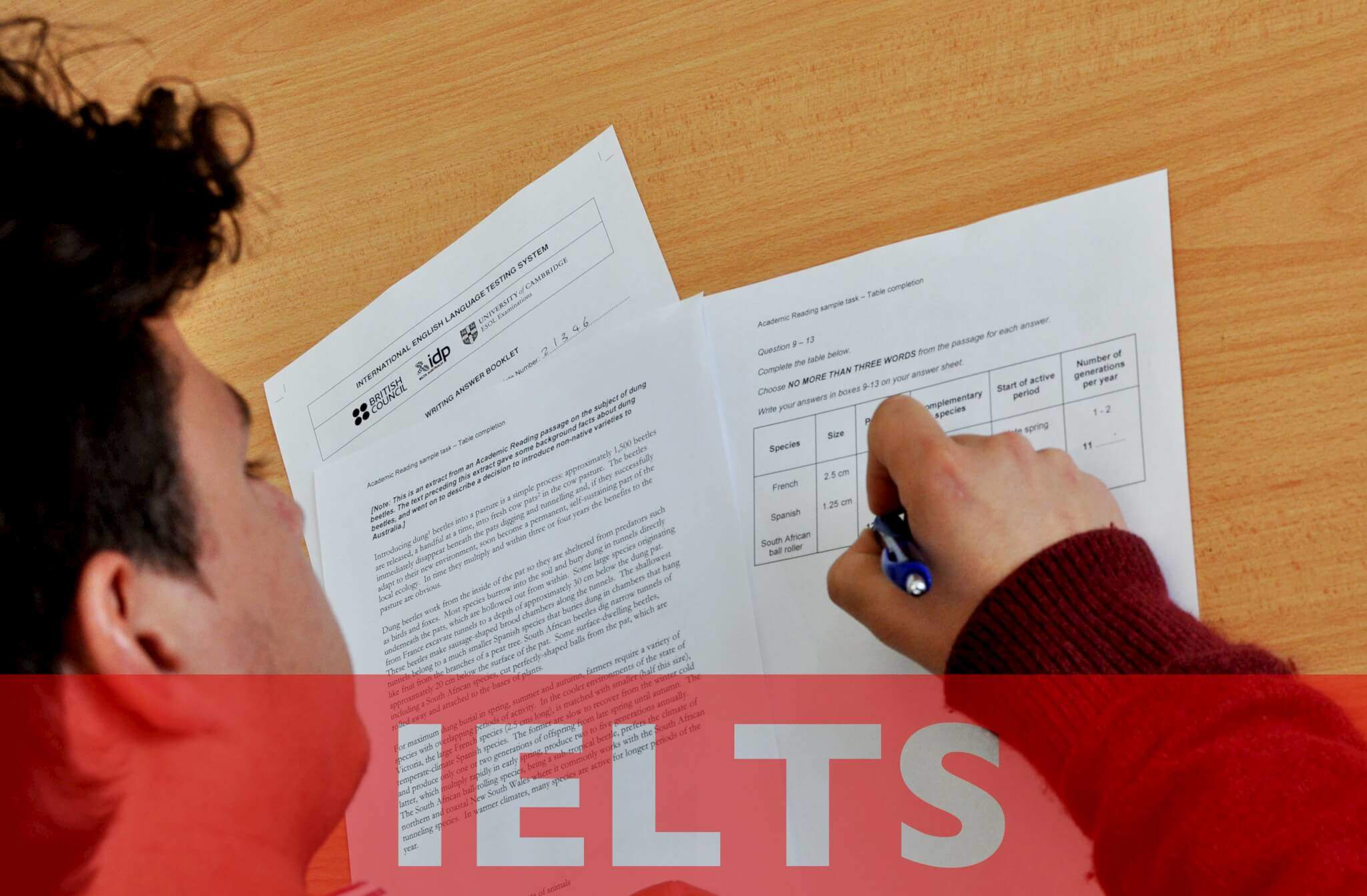 IELTS Preparation Dublin