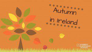 Autumn in Ireland