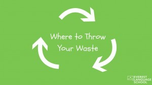 Where to Throw Your Waste