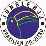 Jungle BJJ Dublin - Learn